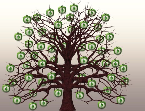 Do You Have a Money Tree?